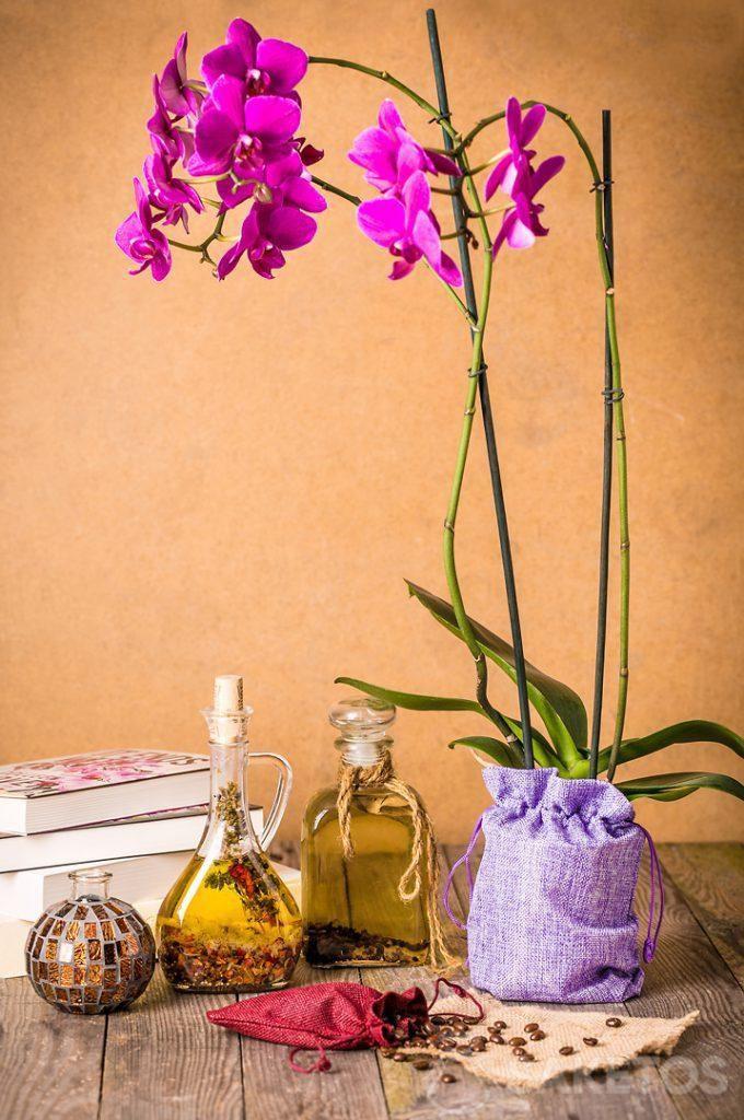 Une orchidée emballée dans un sachet décoratif en toile de jute